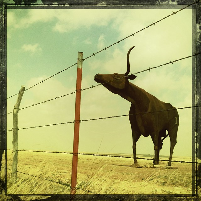Longhorn cattle sculpture west texas throckmorton haskell