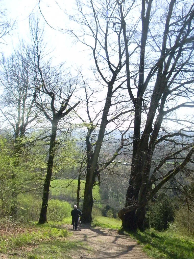 View from Shoulder of Mutton Hill Petersfield to Liss