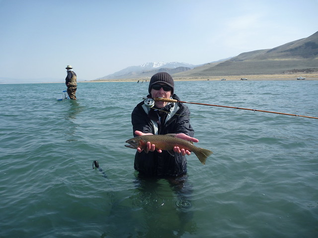 California fishing blog pyramid lake trip april 14 16 2011 for Pyramid lake ca fishing report