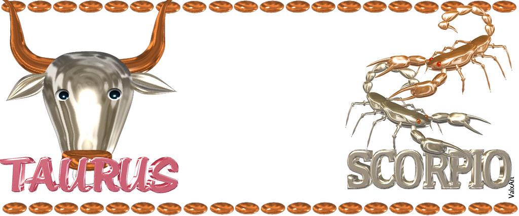 Valxart's Taurus Scorpio zodiac friendship coffee mugs, ha