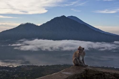 Mono y Gunung Agung