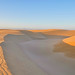 "Guadalupe-Nipomo ""Oceano"" Dunes"
