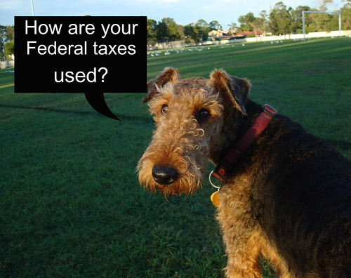 TAXES QUESTIONS