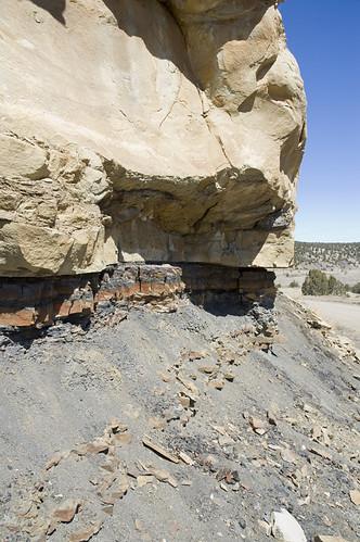 dinosaurs extinction asteroid tertiary ktboundary kpboundary geologypaleontologychicxulubcratercretaceouspaleogene