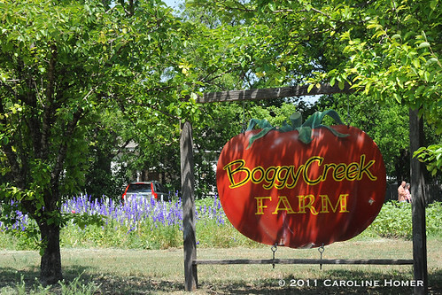 Austin Craigslist Farm And Garden