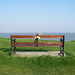 Bench with flowers by Phil Gyford