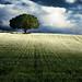 Le pays du vent #082 by alentours & ailleurs