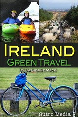 The Future of Green Travel: Ireland Screenshot (2011)
