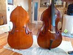 bowed string instrument, string instrument, viol, violone, bass violin, double bass, cello, string instrument,