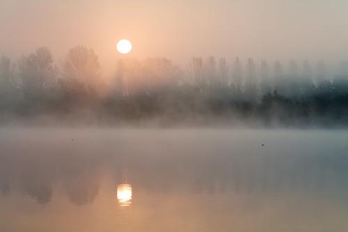 uk summer mist lake sunrise yorkshire ducks local