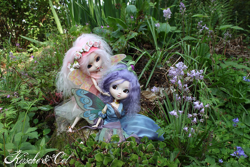 Kirsche and Cel: the two fairies met...