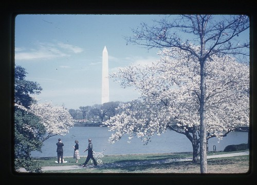 Washington Monument from Tidal Basin, 1959