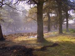 Fire fighting, Ogden Water.