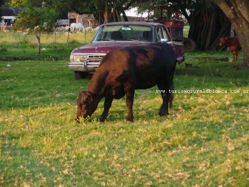 Autor: Turismo Rural de Blanca