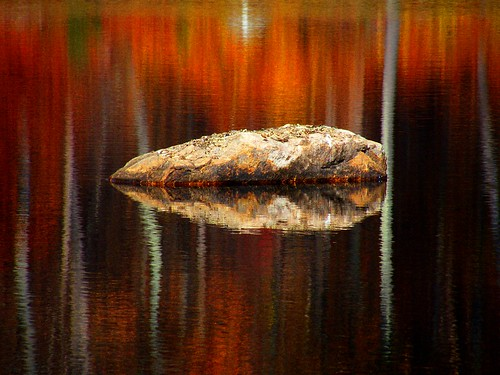 Rock and Atumn Reflection