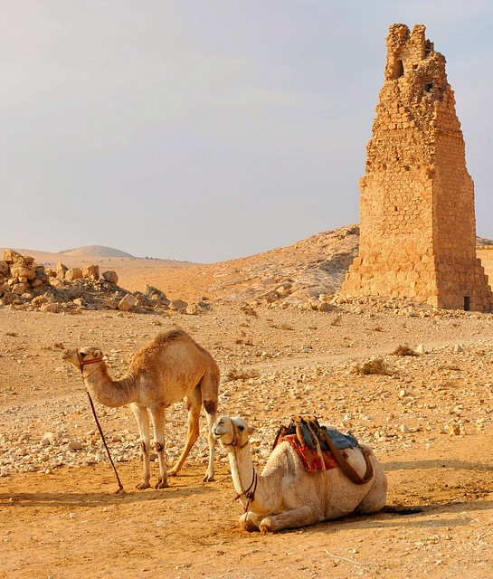 Syria, Palmyra 265