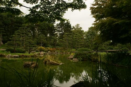 Japanischer Garten in Düsseldorf