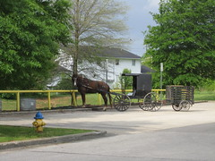 farm(0.0), amish(0.0), vehicle(1.0), horse and buggy(1.0), carriage(1.0), rural area(1.0),