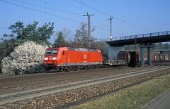 - DB 185 091  bis
