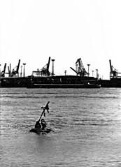 Knarr, the TCA Boat