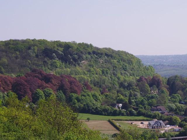 Bluebell Hill, Kent