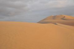 erg(1.0), sand(1.0), aeolian landform(1.0), natural environment(1.0), desert(1.0), dune(1.0), landscape(1.0), sahara(1.0), singing sand(1.0),
