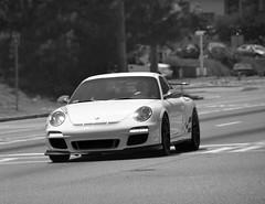 ruf ctr(0.0), porsche carrera gt(0.0), porsche 959(0.0), convertible(0.0), automobile(1.0), automotive exterior(1.0), porsche 911 gt2(1.0), porsche 911 gt3(1.0), wheel(1.0), vehicle(1.0), performance car(1.0), automotive design(1.0), porsche(1.0), bumper(1.0), land vehicle(1.0), luxury vehicle(1.0), supercar(1.0), sports car(1.0),