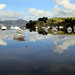 Small photo of Relections of Totara North