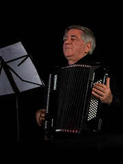accordion, musician, folk instrument, performing arts, music,