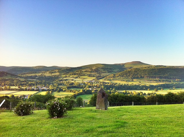 Many a menhir in a sunny evening