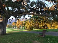 Lanterns on the path. #lantern #golfcourse #ojai