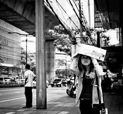 Bangkok shade