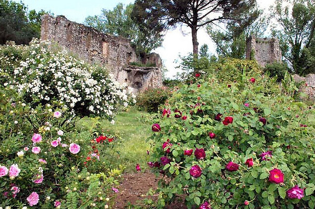 Giardino di ninfa flickr photo sharing for I giardini di ninfa lazio