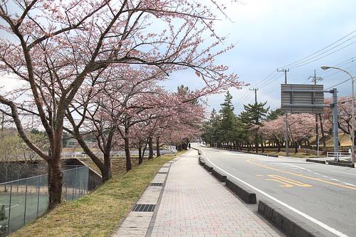xlrider-cycling-japan-158
