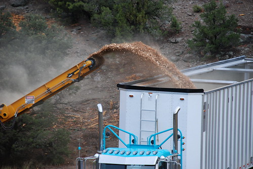 A truck is filled with wood chips as part of the process of turning wood into energy