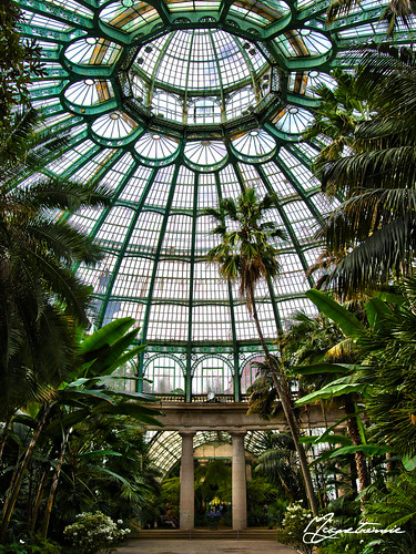 #4424 Royal Greenhouses of Laeken