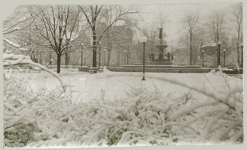 Park in the city with snow