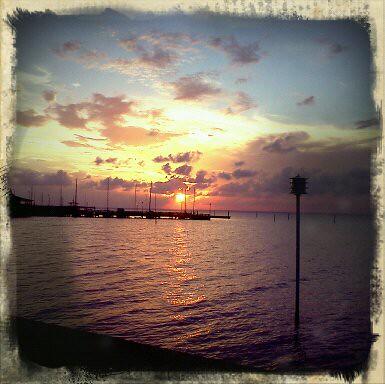 flowers sunset sky storm beach birds clouds boats bay pier al fairhope mobilebay nikond90 debbiegodard