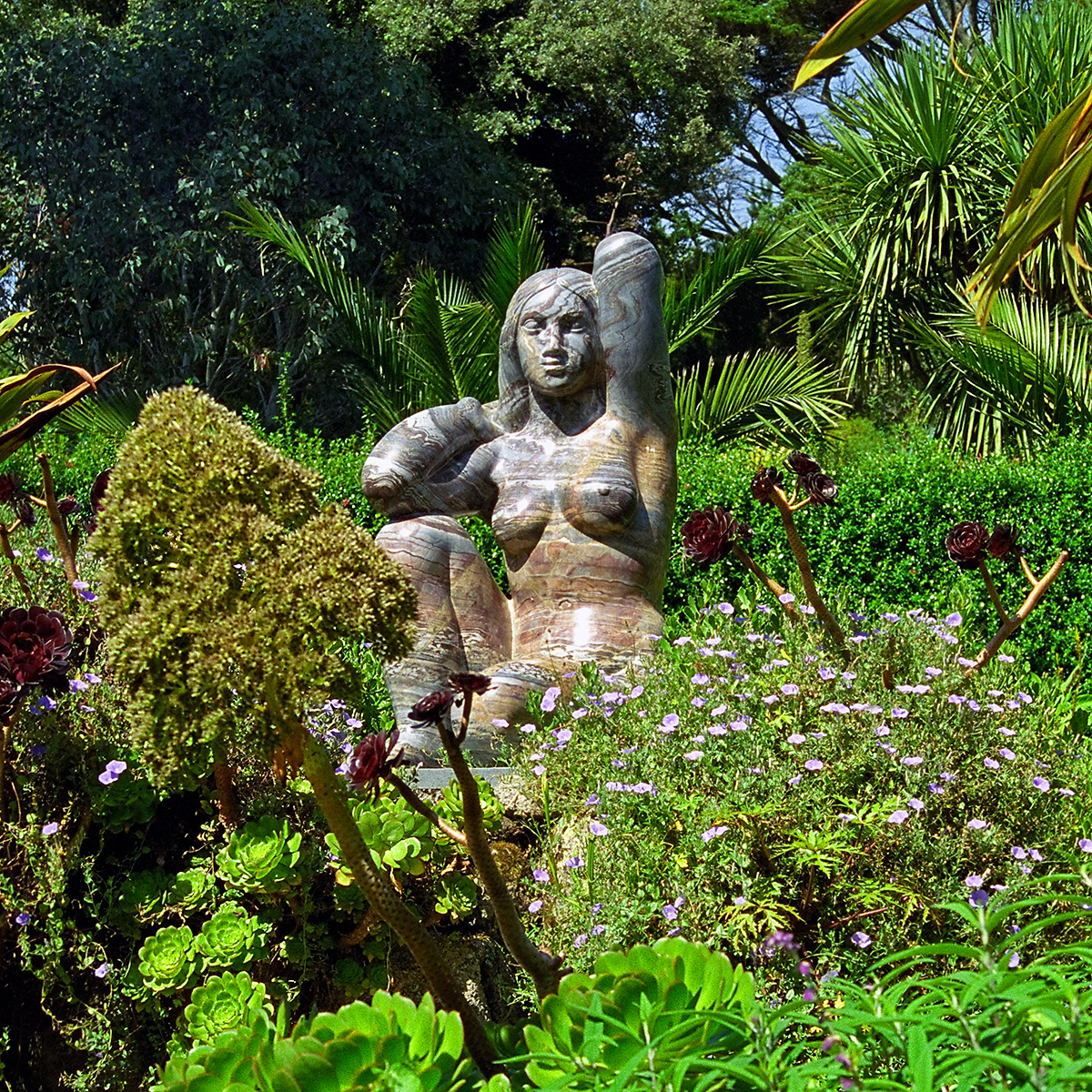 Tresco Abbey Gardens Scilly Isles Uk A Statue Of The