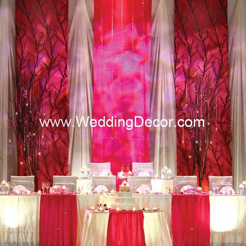 Wedding Backdrop Fuchsia White Flickr Photo Sharing
