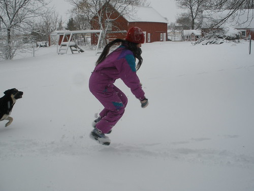 Sophia Jumping in the Dog Tracks