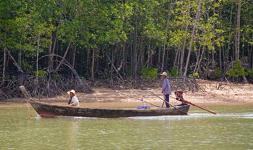 Boat at Bang Rong, Phuket