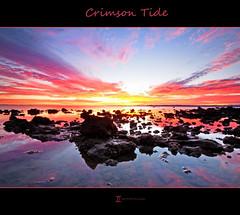 Crimson Tide - For June