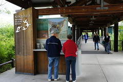 Enjoying the Nisqually National Wildlife Refuge Vistors' Center and boardwalk. Photo credit: David Patte/USFWS