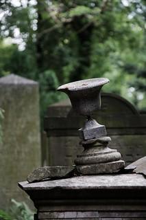 Imagem de Jewish Cemetery. cemetery jewish vanishing wrocław d5000 rawtherapee nikkor18105mm