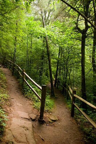 park nature outdoors lexington kentucky ky sanctuary ravenrun
