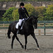 Small photo of Abram Hall Dressage June 2011 (61)