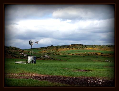 spring temecula inlandempire riversidecounty highway79 landscapepicnik