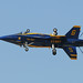 Blue Angels,Lakeland Sun 'n Fun,02Apr11.9 by Pervez 183A