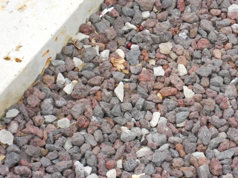 Piedras decorativas 3